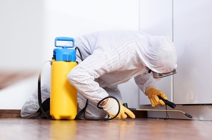 Qualities Of The Best Commercial Pest Control