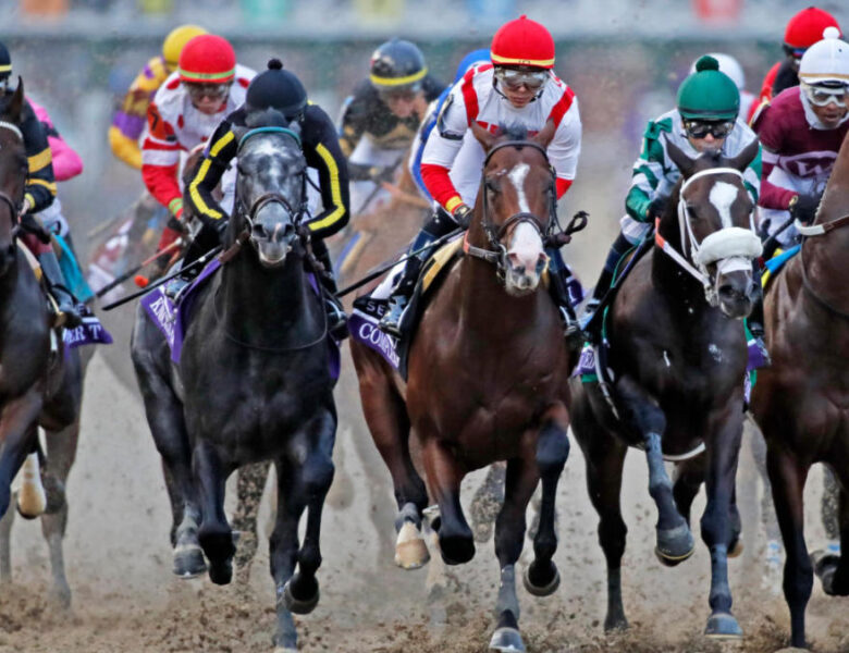 Understanding Different Types of Horse Racing Odds