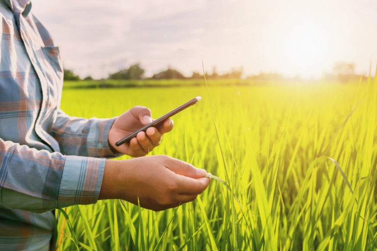 How farming apps are affecting the lives of farmers